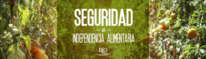 Seguridad e Independencia   Alimentaria
